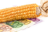 Euro banknotes with corn cob