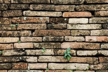 old brick in wall