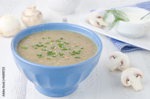 Bowl of mushroom soup with fresh mushrooms and dill close up hor