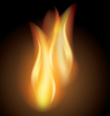 Vector flames on dark background, made with mesh