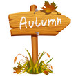 autumn wooden arrow board
