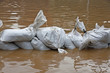 sandbags for flood defense and brown water - 46820936