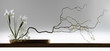 wide sreen japanese ikebana - 46823309