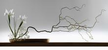 Szeroki sreen japoński ikebana
