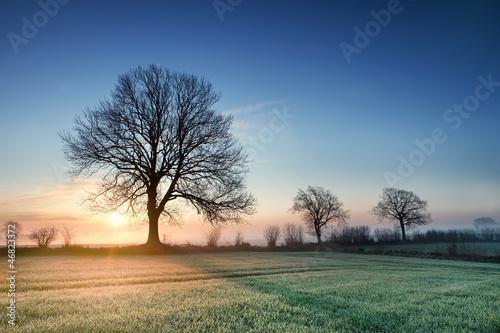 Leinwandbild Motiv Sonnenaufgang
