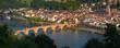 Neckar und Alte Brücke