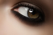 Elegance close-up of female eye with classic brown make-up