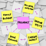 Pregnancy Concerns Expecting Mothers Parents Sticky Notes