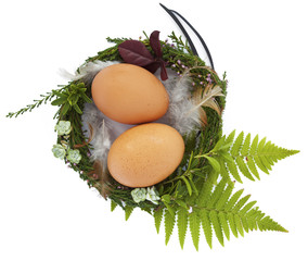 Easter nest with twio eggs and feathers