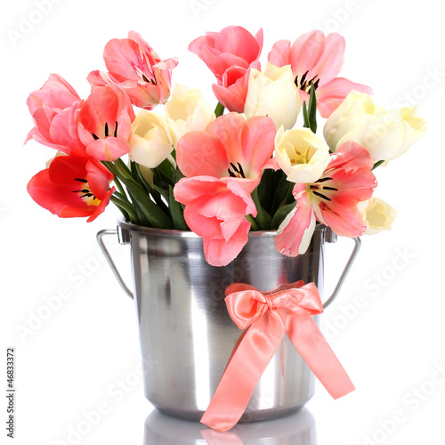 beautiful pink tulips in bucket isolated on white.