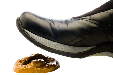 Close-up of black shoe on feces