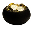 Gold coins in pot