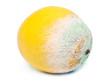 Verschimmelte Zitrone