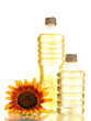 oil in bottles and sunflower, isolated on white