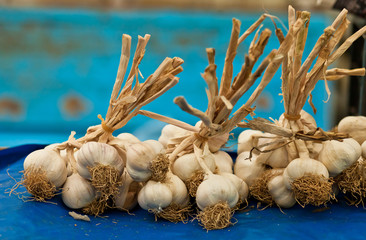 bunch of garlic is on the market