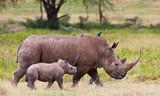 Rhinoceros with her baby, Lake Nakuru, Kenya