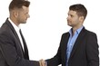 Young businessmen shaking hands
