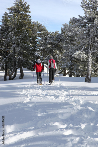 Couple cross-country skiing through woods