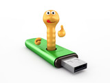 Worm in the USB flash drive