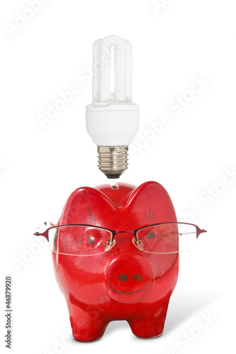 Piggy-bank with glasses and  light bulb