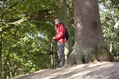 A mature man in the countryside looking at the surrounding view