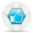 thumb up round blue web icon on white background