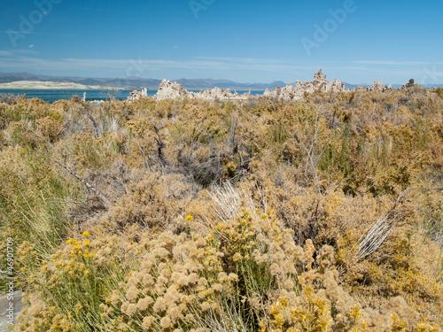 Paysage du lac Mono Lake