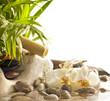 Fototapeten,spa,orchid,wasser,aromatherapie