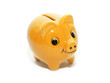 yellow money pig