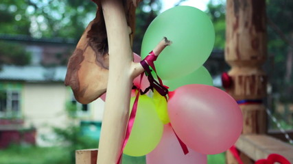 Balloons on a branch