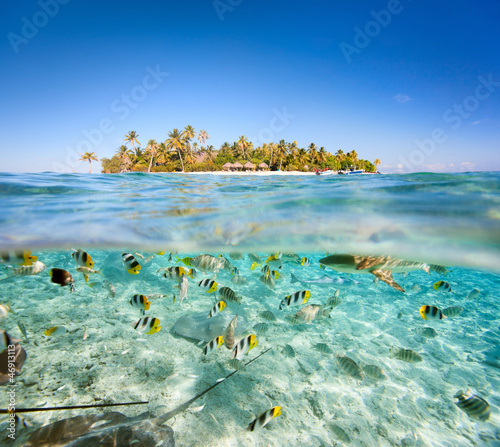Aluminium Palm boom Tropical island above and underwater