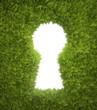 Garden keyhole