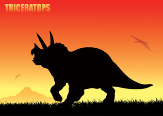 Triceratops background