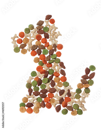 Abstract form of pieces of dog food. On a white background.