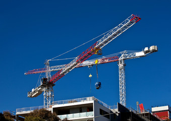 High rise cranes on city office construction site