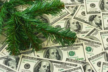 Christmas tree and money