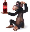 Monkey and soda
