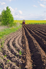plowed spring field for patatoes and little tractor