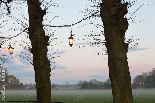 Trees with lanterns at sunset with cloudy sky. Meadow with mist.