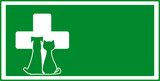 green veterinary visiting background with dog and cat