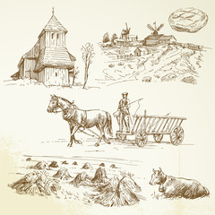 rural landscape, farming, haying