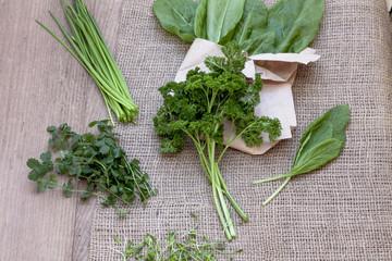 Farmer's Market - Organic herbs