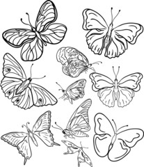 outline butterfly silhouettes