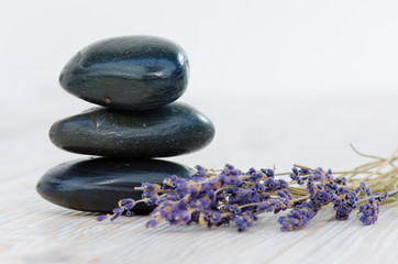 Hot-Stone Steine mit Lavendel
