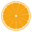 texture of an orange. vector