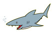 Shark - cartoon character
