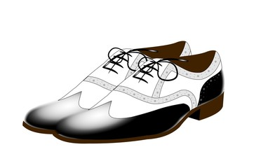 famous gangnam dancing shoes over white