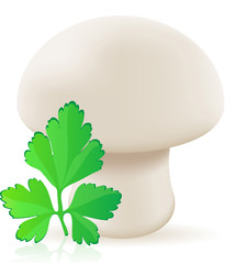 mushroom champignon illustration