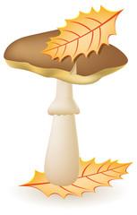 mushroom greasers illustration