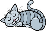 sleeping cat cartoon illustration